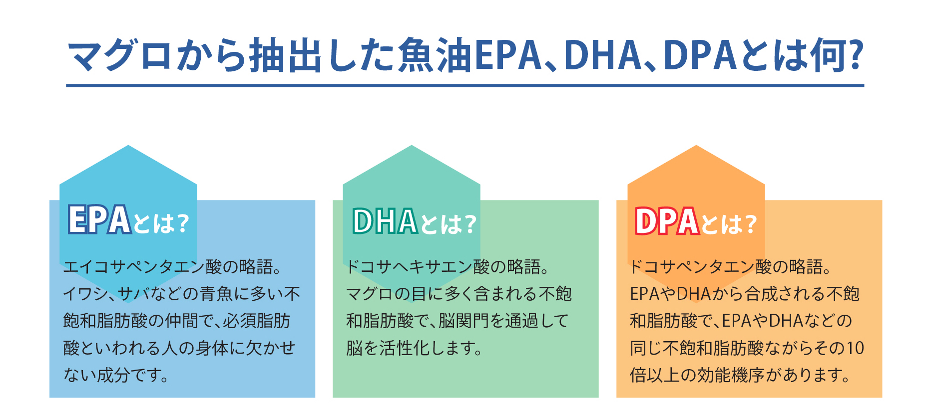 DHA・EPA・DPAの説明